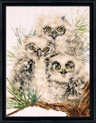 Design Works Crafts - Owl trio counted cross stitch picture kit